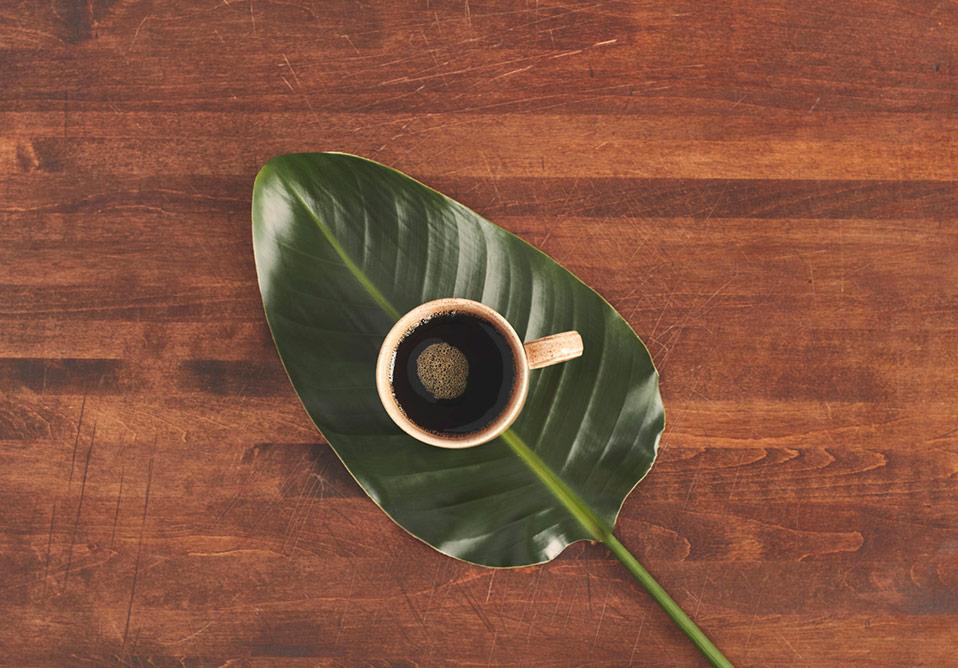 Marley Coffee - Coffee Cup